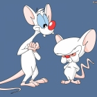 martin Hyde / pinky and the brain / 794910738